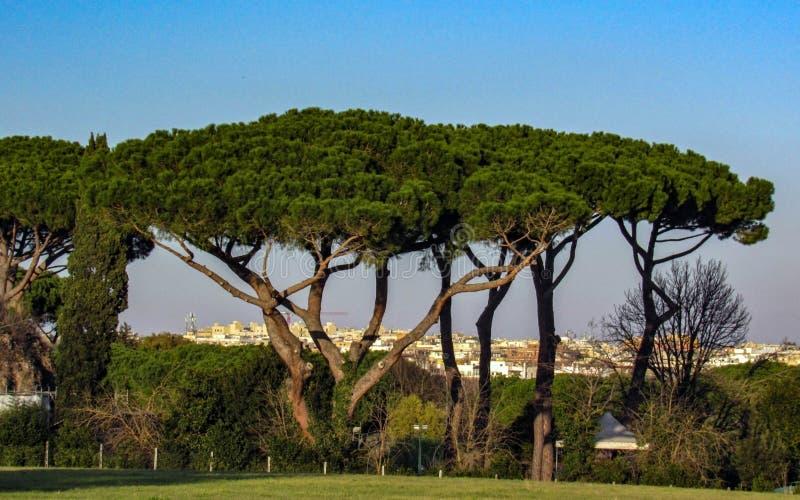 Punkty zwrotni i historyczne ruiny w Rzym, Włochy zdjęcie royalty free