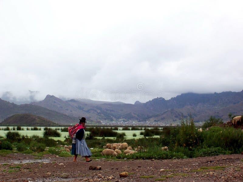 PUNO, ПЕРУ, 3-ье января 2007: Неопознанная женщина Aymara идет вдоль края озера Titicaca около Puno, Перу стоковые изображения rf