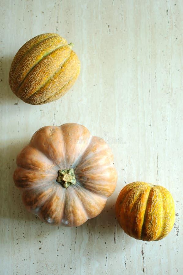 Punpkin de Halloween y fondo de los melones con el espacio de la copia foco selectivo y bokeh foto de archivo libre de regalías