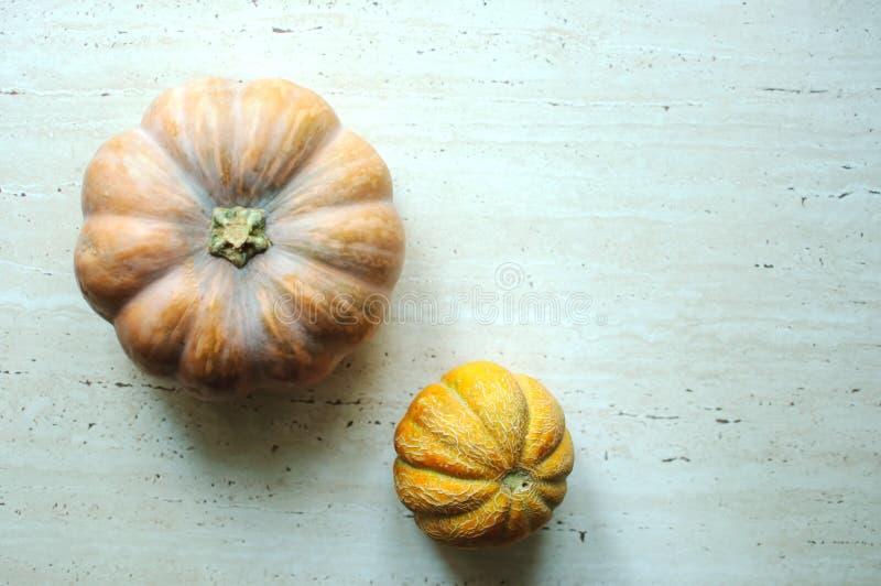 Punpkin de Halloween y fondo de los melones con el espacio de la copia foco selectivo y bokeh fotos de archivo libres de regalías