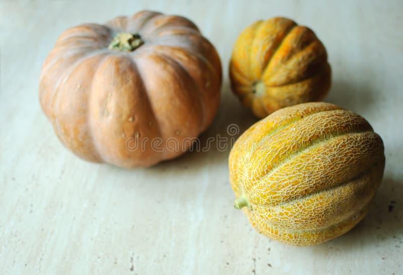 Punpkin de Halloween y fondo de los melones con el espacio de la copia foco selectivo y bokeh fotos de archivo
