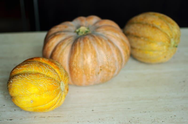 Punpkin de Halloween y fondo de los melones con el espacio de la copia foco selectivo y bokeh foto de archivo