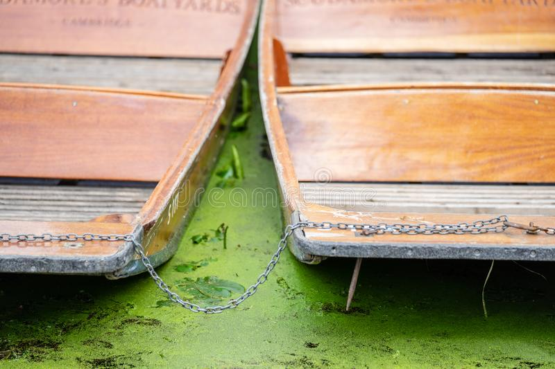 A punt is a flat-bottomed boat with a square-cut bow, designed for use in small rivers or other shallow water. Cambridge, England.  royalty free stock images