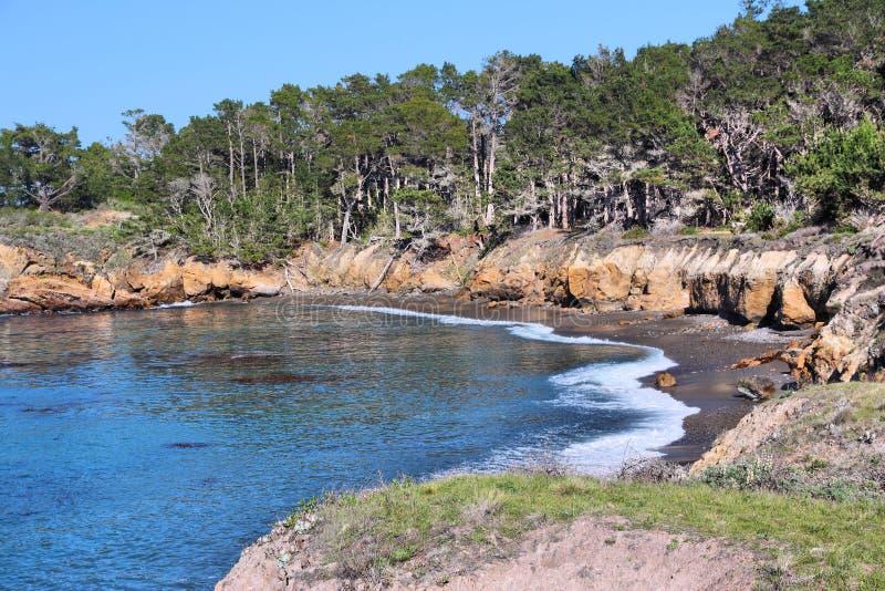 Punt Lobos stock foto