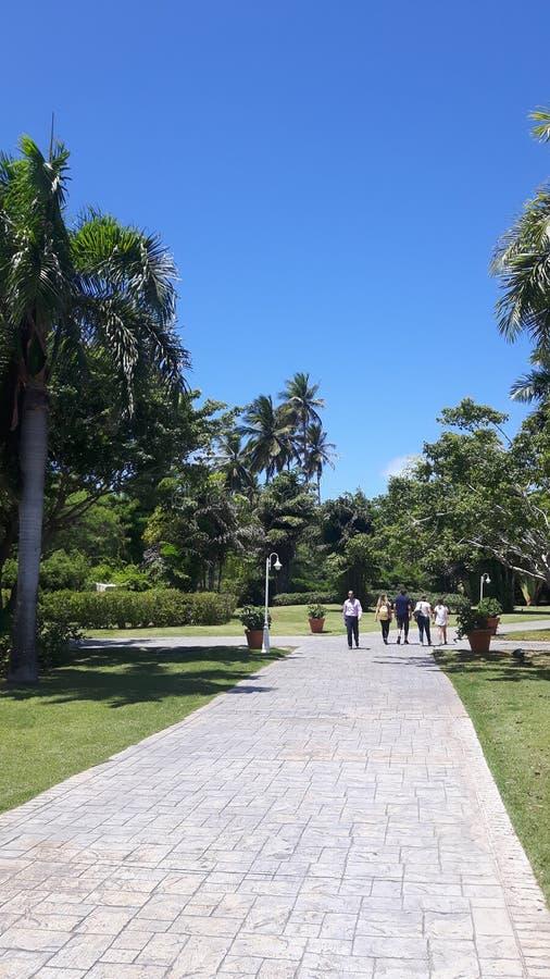 Punta Cana photo libre de droits