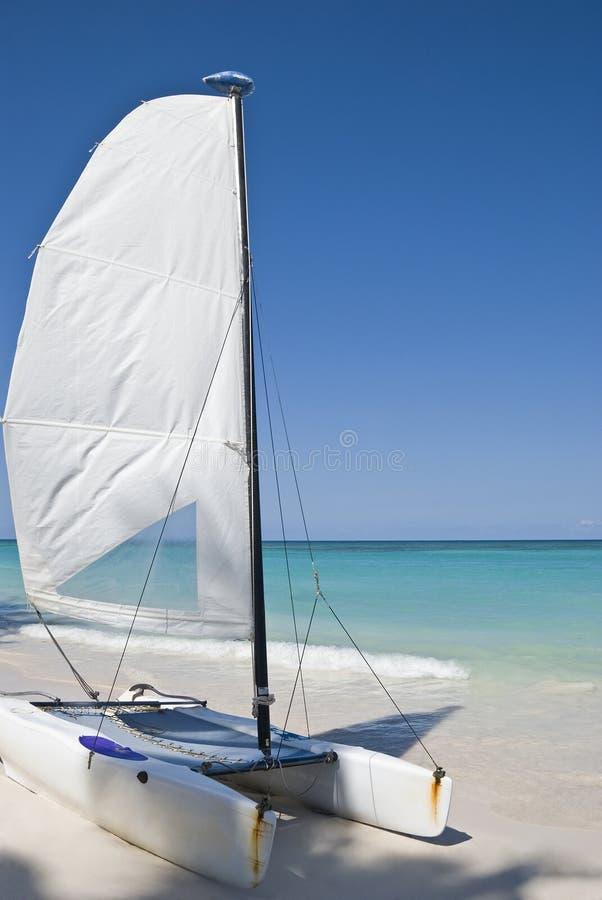 Punta-Cana, république dominicaine photos libres de droits