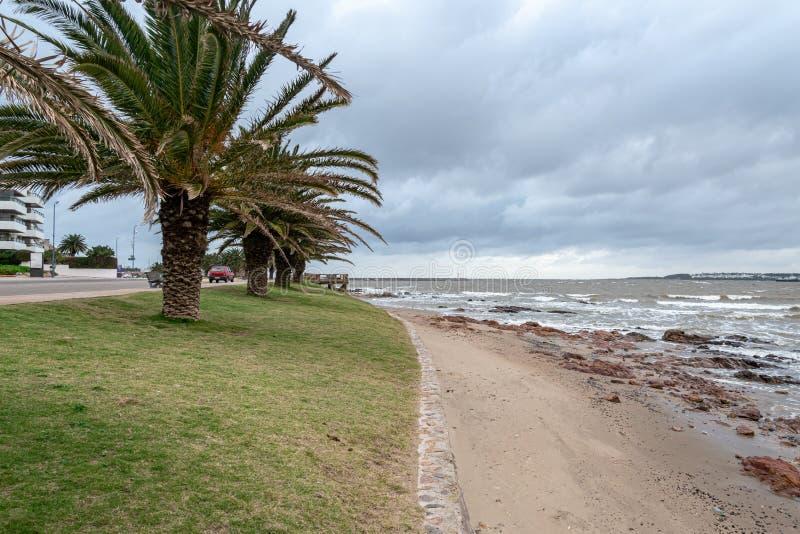 Punta del Este Peninsula beautiful place and beaches in eastern Uruguay stock image