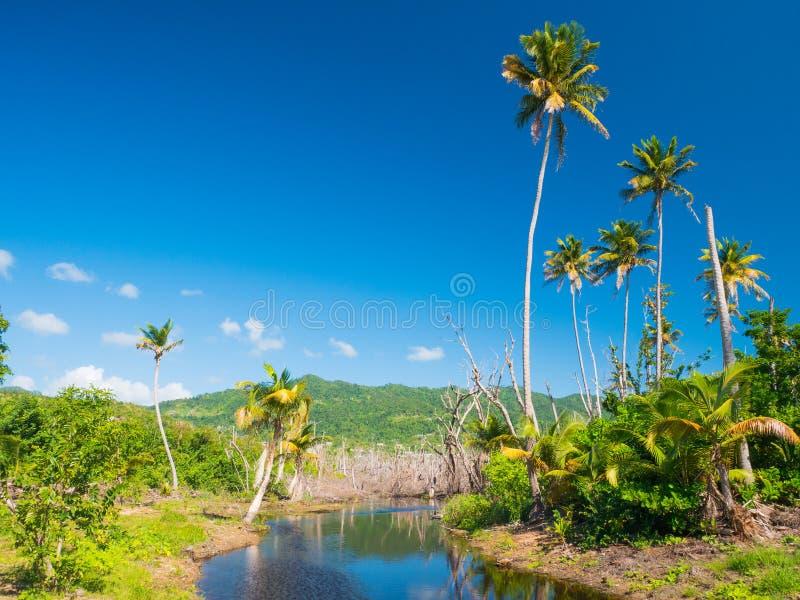 Punta Tuna Wetlands Nature Reserve - Puerto Rico - U.S.A. fotografia stock