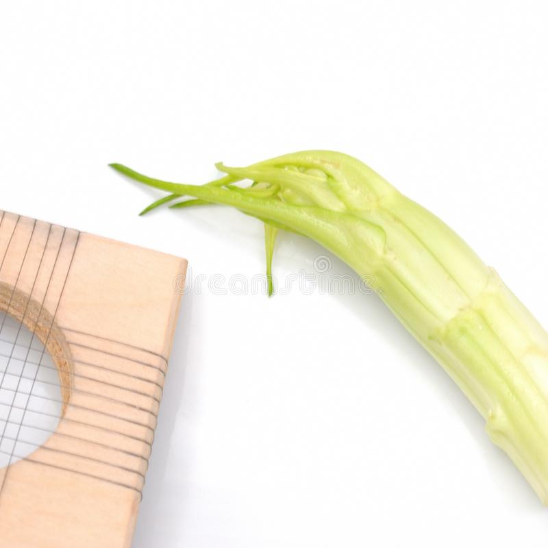 Puntarelle, chicorée italienne tipycal images stock