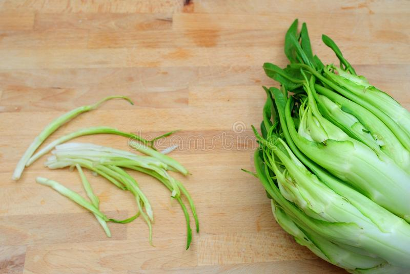 Puntarelle, chicor?e italienne tipycal image stock