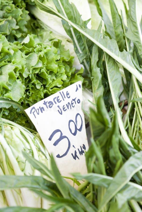 Puntarelle Veneto op de natte markt van Venetië royalty-vrije stock afbeelding