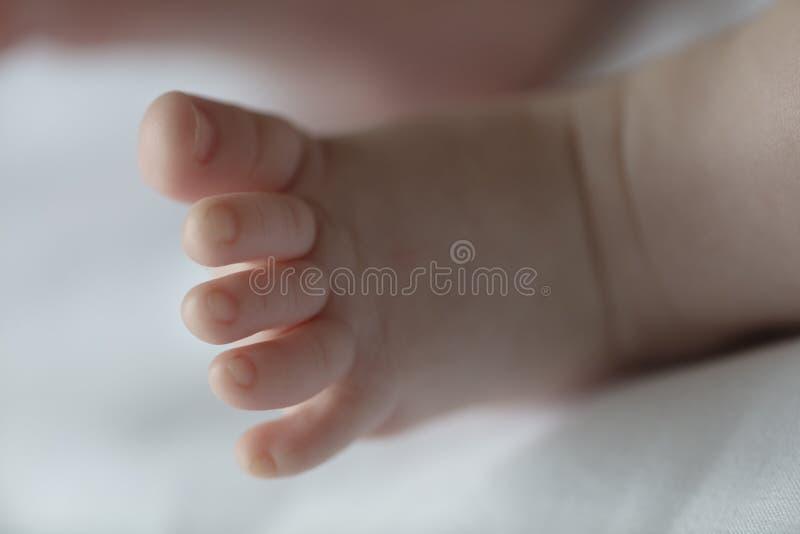 Puntas lindas del bebé foto de archivo libre de regalías