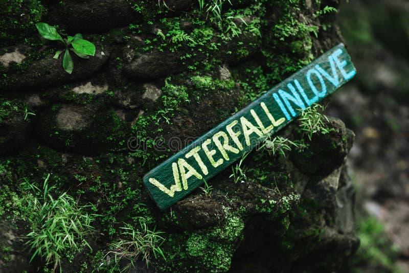 Puntatore della cascata nella foresta tropicale immagine stock libera da diritti