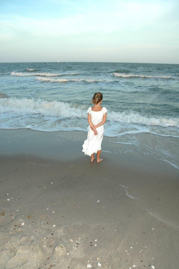 Puntelli del Sandy di tramonto fotografia stock libera da diritti