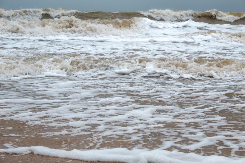 Puntello di mare Spiaggia Mare di Azov immagini stock