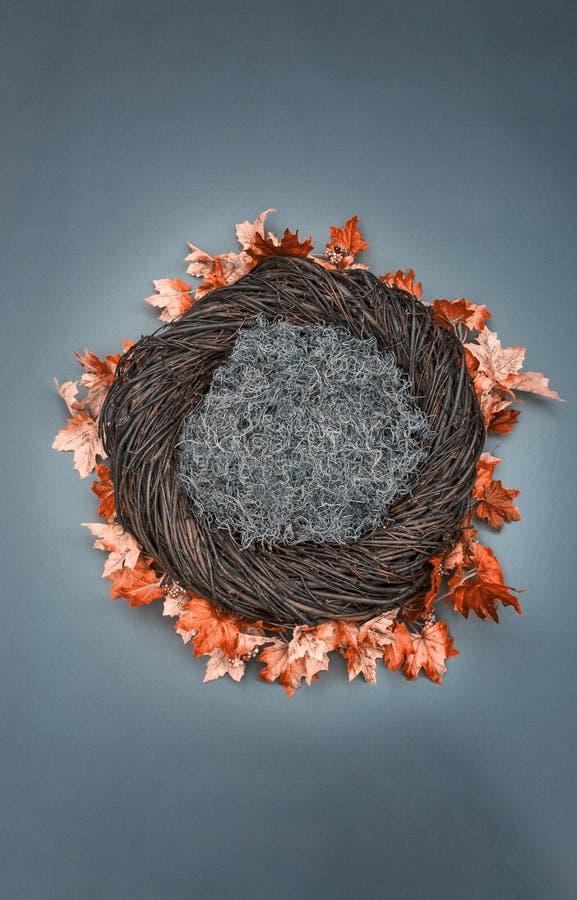 Puntello infantile della foto del fondo di fantasia del nido con le foglie di caduta e la m. fotografie stock