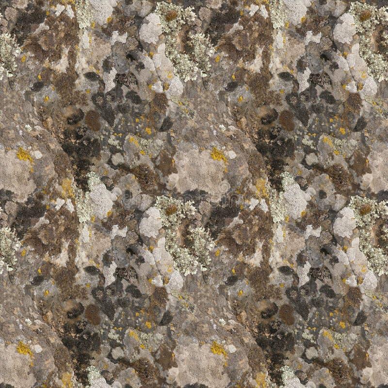 Punti del lichene sulla pietra modello senza cuciture di fondo realistico immagine stock
