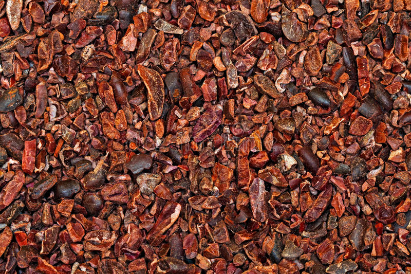 Punti di cacao crudi fotografia stock libera da diritti