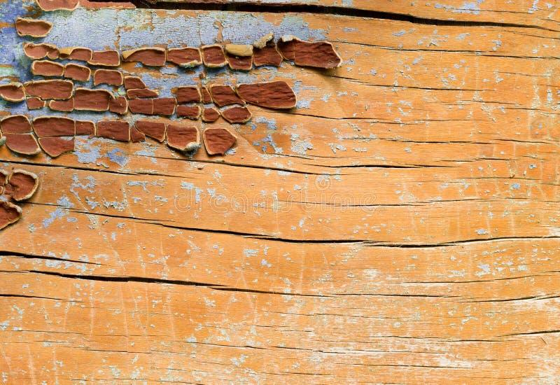 Punti di pittura su superficie di legno immagini stock