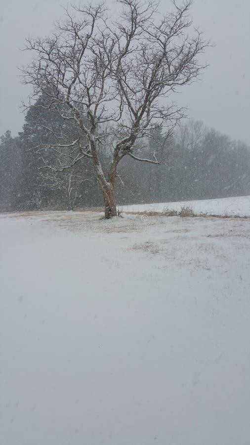 Punti di vista di Snowy immagine stock