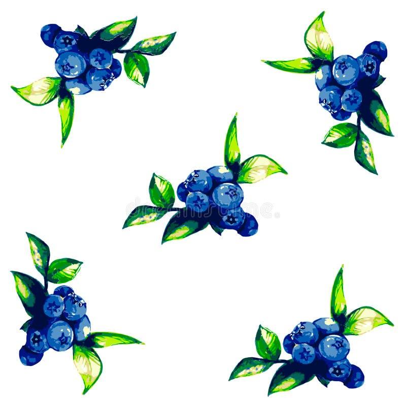 Puntilla de bayas y de flores libre illustration