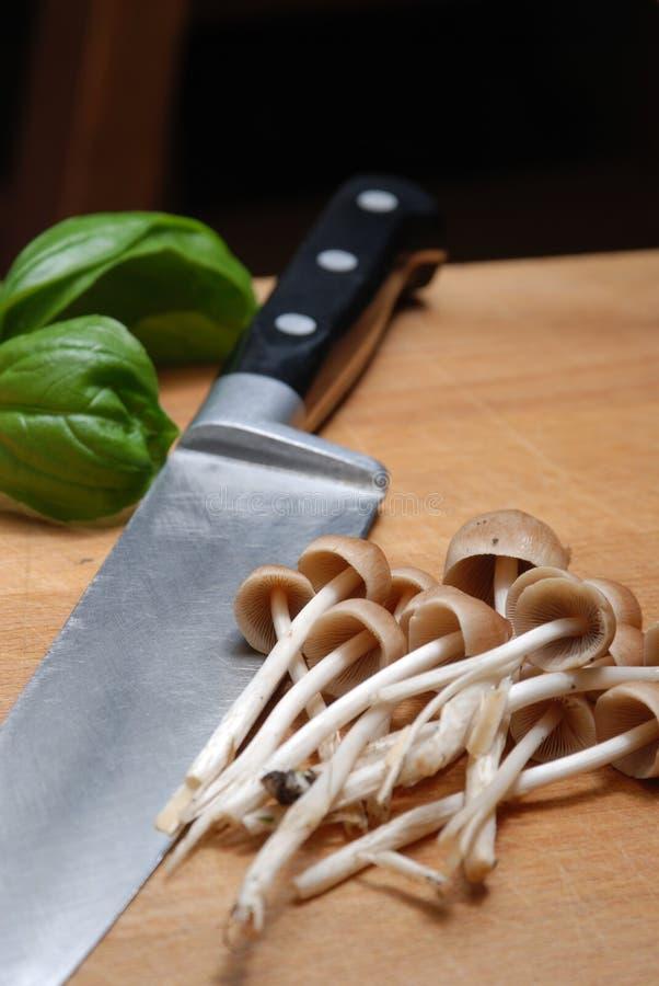 puntilla de la albahaca, cuchillo de las setas imagen de archivo libre de regalías