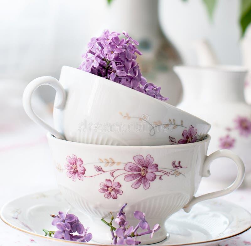 Puntilla de la lila en una taza imagenes de archivo