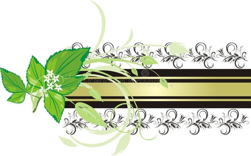 Puntilla de la menta en el fondo de la bandera decorativa ilustración del vector