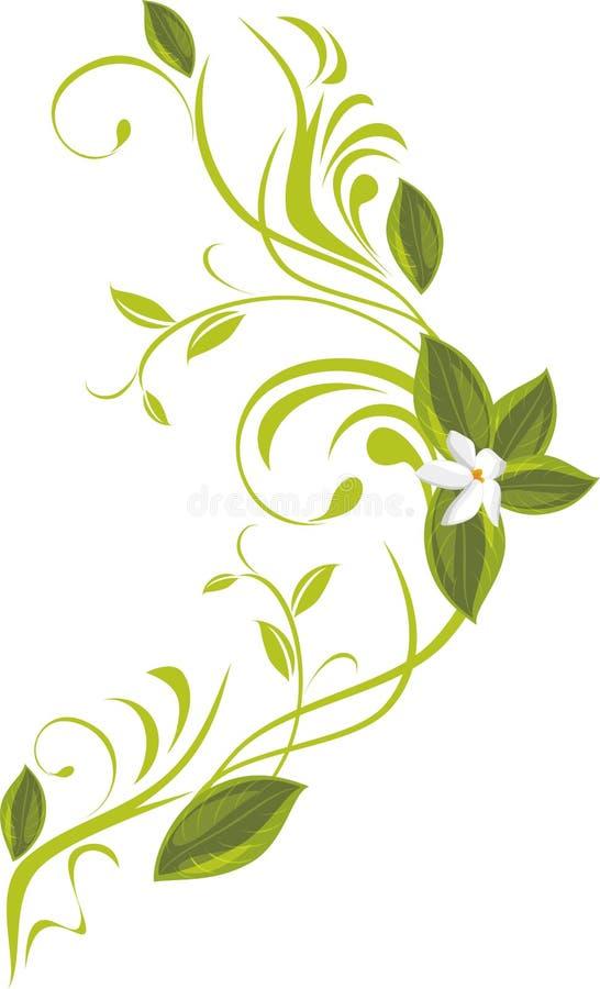 Puntilla floreciente stock de ilustración