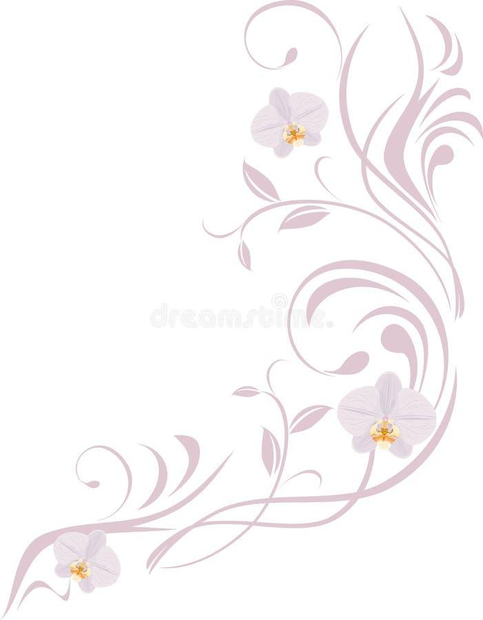 Puntilla ornamental con las orquídeas ilustración del vector