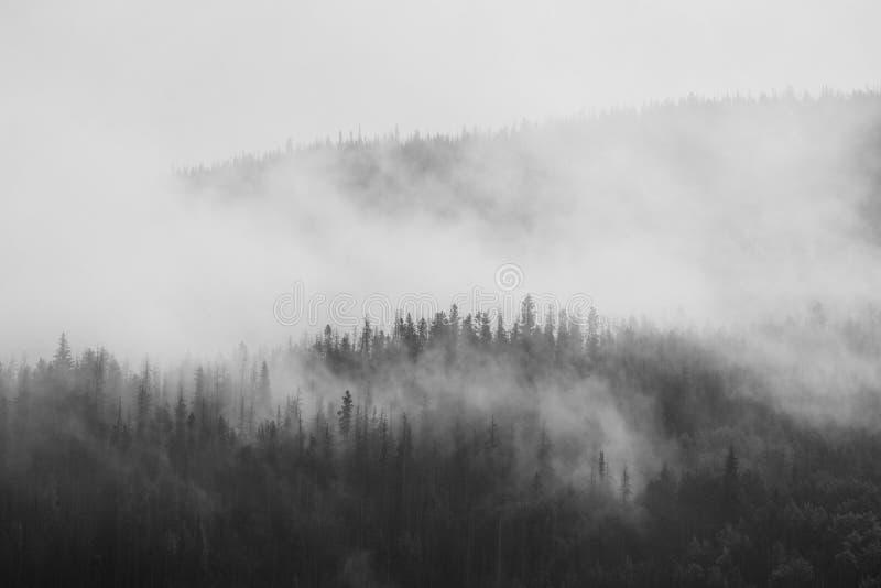 Punto alpino del puesto de observación de la tundra fotografía de archivo libre de regalías