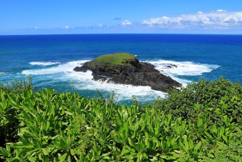 Punto de Kilauea, Kauai, Hawaii imagen de archivo libre de regalías