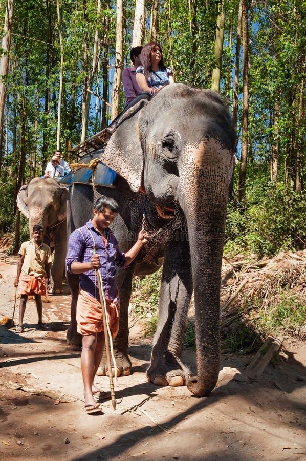 Punto de la llegada del elefante Los turistas montan un elefante fotos de archivo