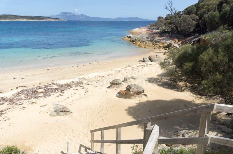 Punto de los pantalones, isla del Flinders, Tasmania, Australia imagen de archivo