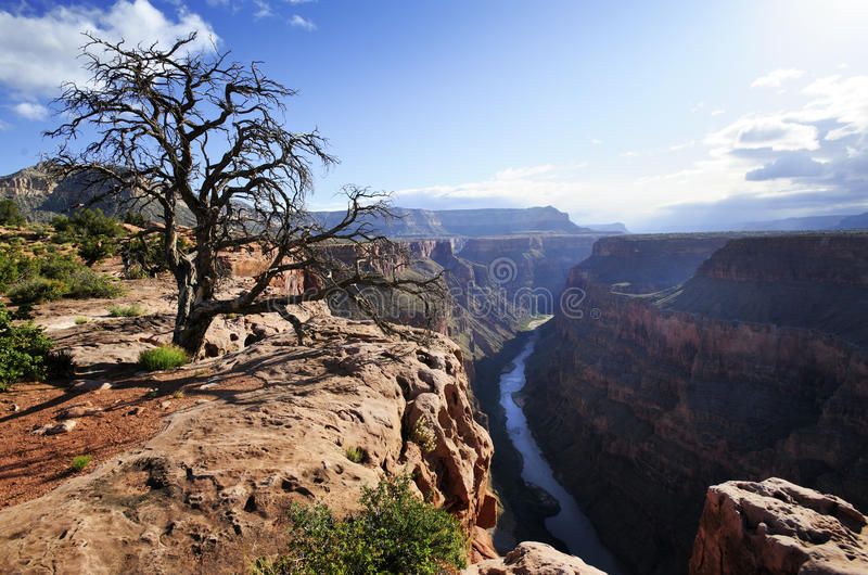 Punto de Toroweap, Grand Canyon imagenes de archivo