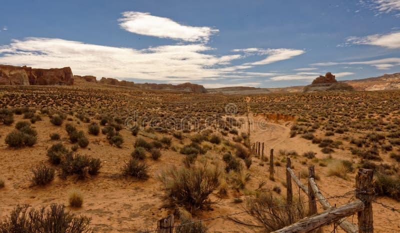 Punto del canyon, paesaggio dell'Utah immagine stock libera da diritti