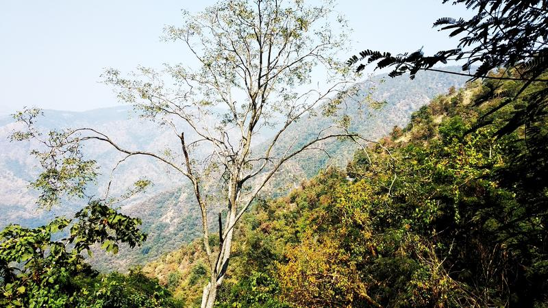 Punto del Mountain View foto de archivo
