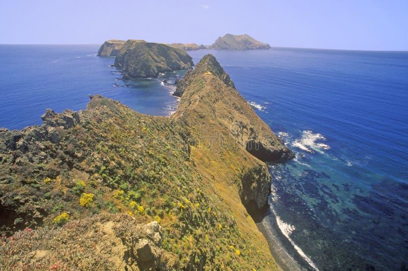 Punto di ispirazione sull'isola di Anacapa, isole del canale parco nazionale, California fotografia stock
