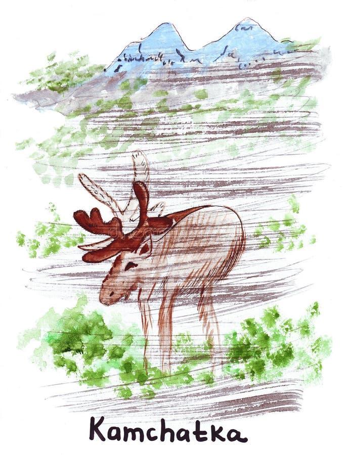 Punto di riferimento dell'illustrazione che schizza renna selvaggia nel Kamchatka illustrazione vettoriale