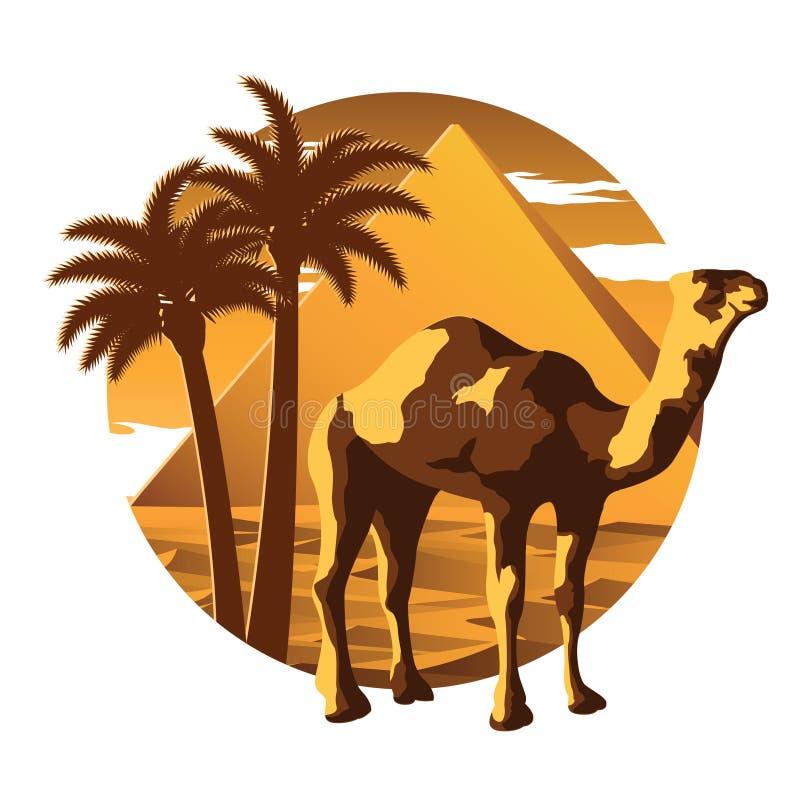 Punto di riferimento famoso del cammello, della piramide e del deserto e simbolo dell'Egitto, per illustrazione vettoriale