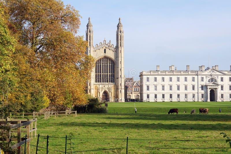 Punto di vista autunnale dell'College Chapel, Cambridge, Inghilterra di re fotografia stock libera da diritti