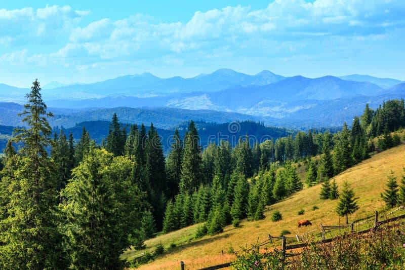 Punto di vista carpatico, Ucraina del paese della montagna di estate immagini stock