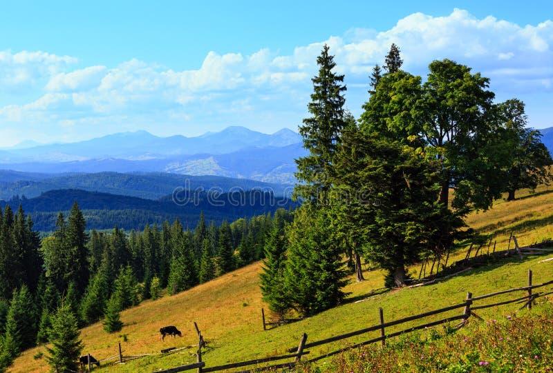 Punto di vista carpatico, Ucraina del paese della montagna di estate fotografia stock libera da diritti