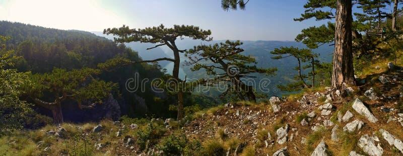 Punto di vista della montagna fotografia stock libera da diritti