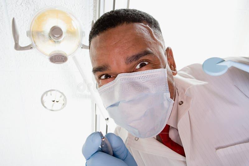 Punto di vista di angolo basso del dentista e dell'infermiere dentario immagine stock