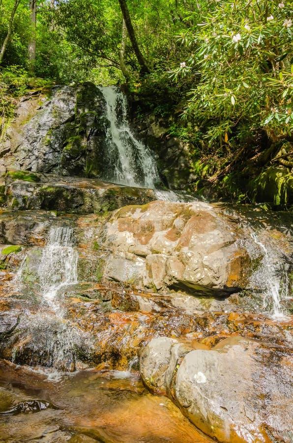Punto di vista di Laurel Falls nel parco nazionale di Great Smoky Mountains immagini stock libere da diritti