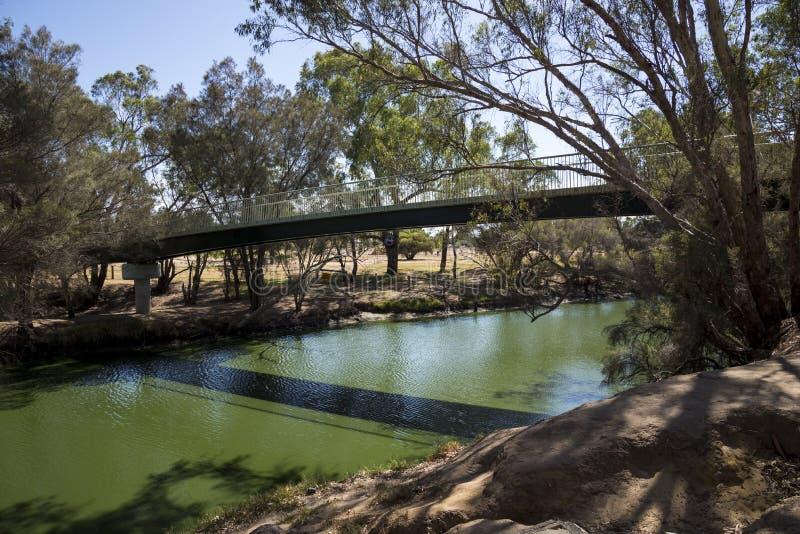 Punto di vista di Maali Bridge attraverso il fiume del cigno nel cigno Va di Australia occidentale immagine stock