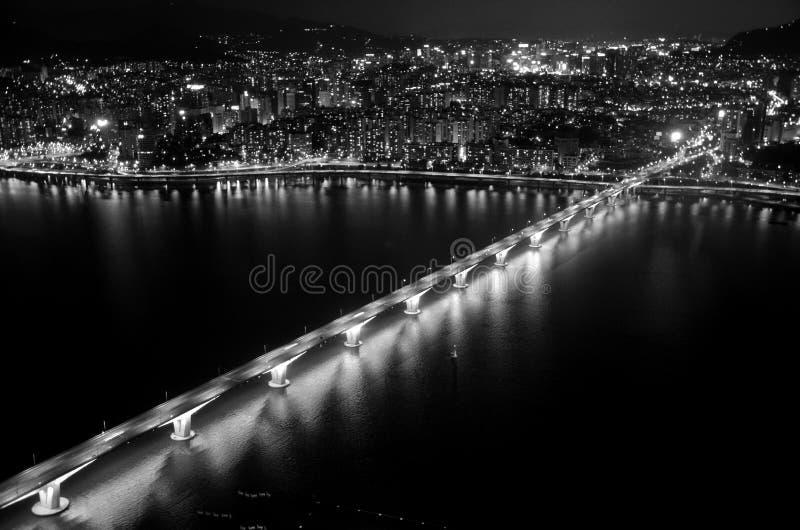 Punto di vista di notte della città & di Han River di Seoul, in bianco e nero fotografie stock libere da diritti