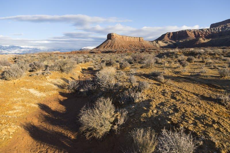 Punto di vista di inverno di mattina delle montagne e degli arbusti nell'Utah del sud, nella regione di Zion National Park fotografia stock
