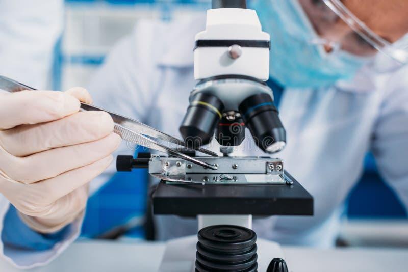punto di vista parziale degli scienziati che lavorano a scientifico fotografia stock libera da diritti